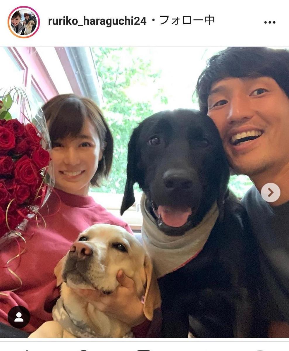 原口元気の妻・ルリコさん、結婚5周年を報告「いつの間にか大きなバラの花束をさらりと渡せる男性に…」 : スポーツ報知
