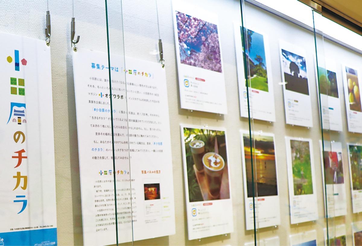 インスタで写真展に参加 小田原を写した作品募集 | 小田原・箱根・湯河原・真鶴 | タウンニュース