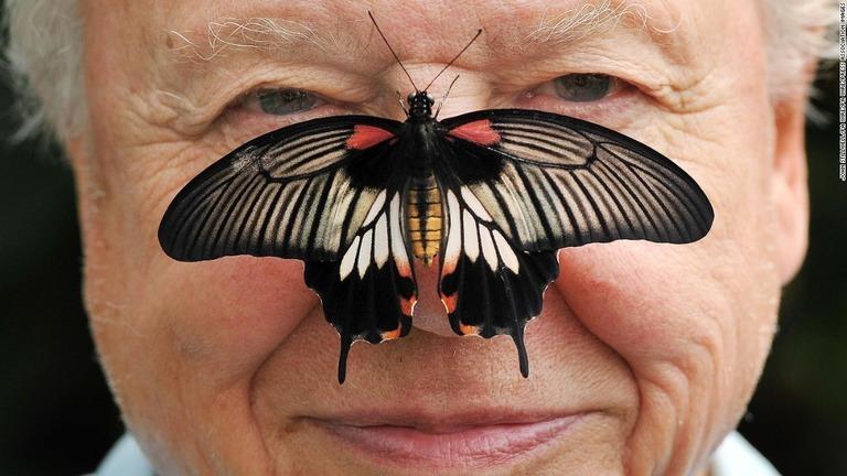 CNN.co.jp : 動物学者デービッド・アッテンボロー氏、インスタグラムへの投稿停止