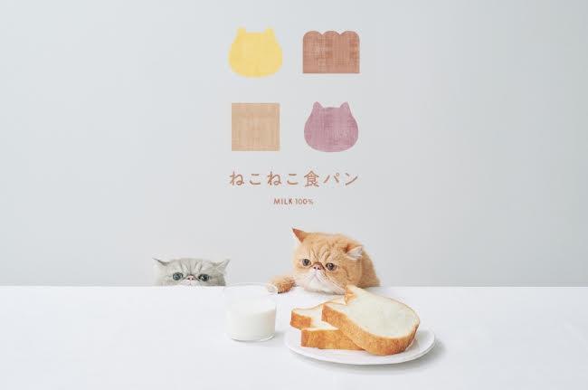 ねこの形の高級食パン専門店「ねこねこ食パン」が福岡天神に続き博多マルイに常設出店!博多マルイ店には「ねこねこチーズケーキ」も九州初常設。:時事ドットコム