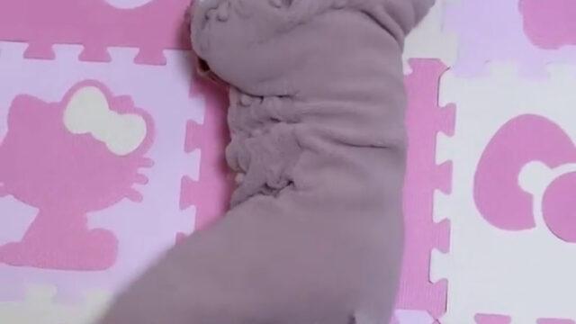 16歳でママ・重川茉弥、4か月長女を公開「完全に寝返り打てるようになった 感動」 : スポーツ報知