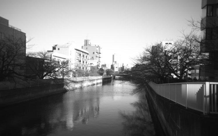 東野圭吾『白鳥とコウモリ』刊行記念 モノクロ写真コンテストを開催します 白鳥とコウモリ 幻冬舎編集部 - 幻冬舎plus